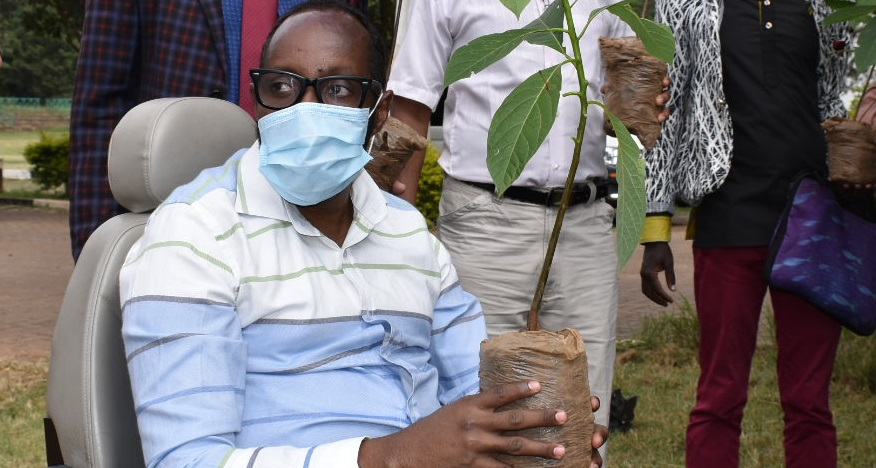 Executive Director during the tree planting event